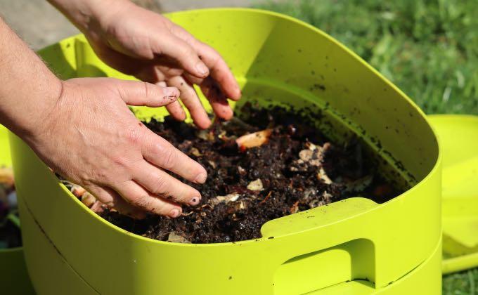 Pour récupérer un compost exempt de vers, il suffit d'exposer l'étage du dessus du lombricomposteur à la lumière du jour et de le remuer doucement.